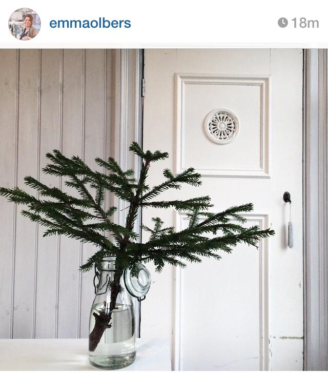 Emma_Olbers_Instagram_Martinreda_1